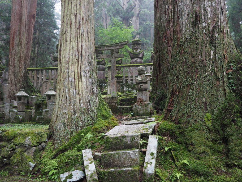 The ground and gravestones are covered in moss in Okunoin Cemetery – Japan's largest cemetery – at Mount Koyasan. The cemetery is set high amongst 600-year-old cedar trees, where mountain fog creates a mysterious atmosphere. Image: Alison Binney