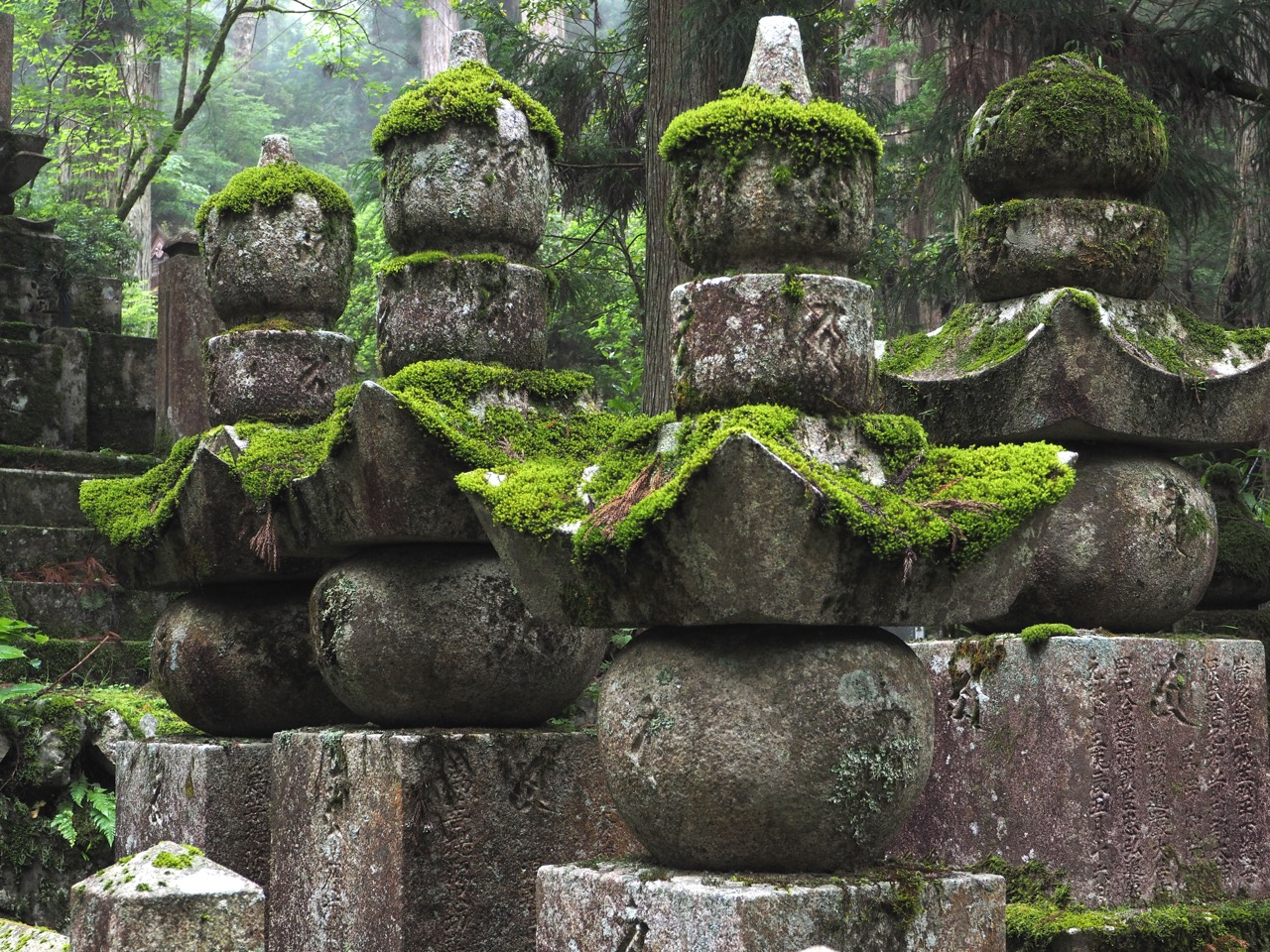 Gravestones are covered in moss in Okunoin Cemetery – Japan's largest cemetery – at Mount Koyasan. The cemetery is set high amongst 600-year-old cedar trees, where mountain fog creates a mysterious atmosphere. Image: Alison Binney