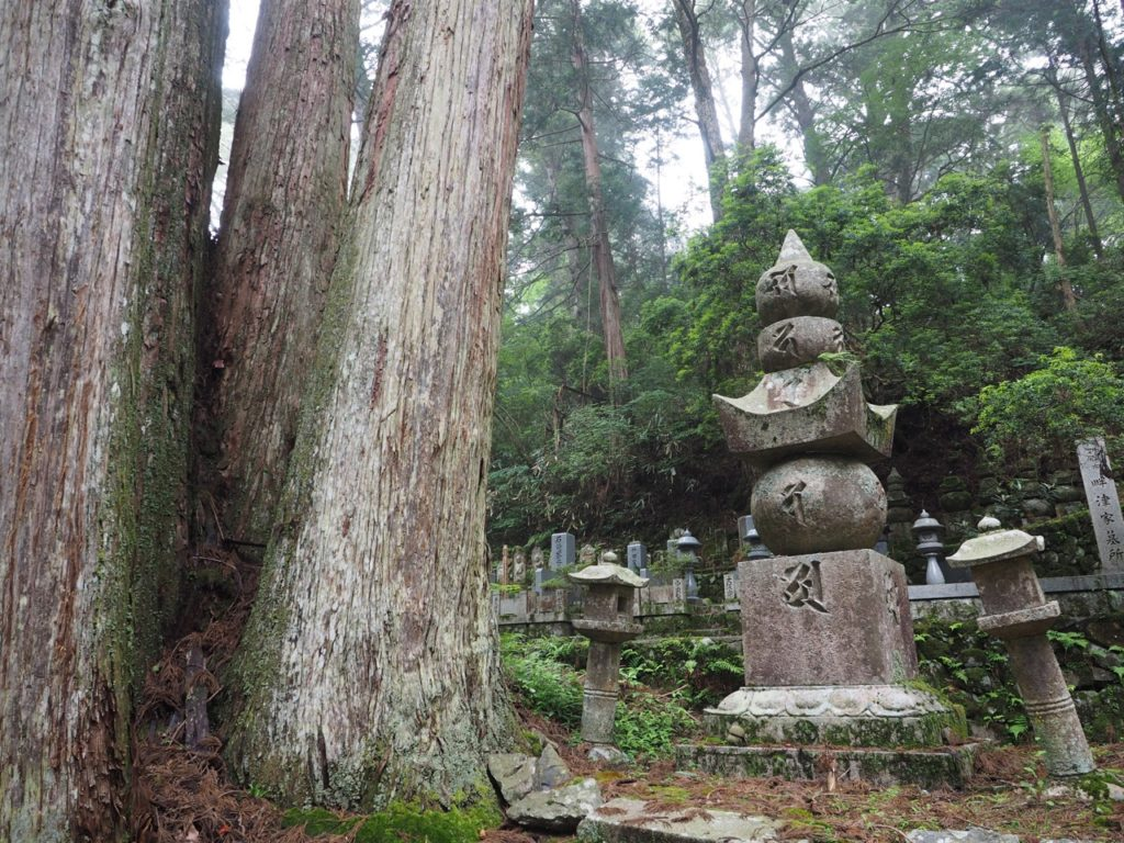 Okunoin Cemetery in Koyasan (Mount Koya) is the largest cemetery in Japan. UNESCO named Mount Koya a World Heritage Site in 2004. The headstones symbolise earth, water, fire, wind and space. Huge cedar trees stand tall among the cemetery – some of which are more than 600 years old. Image: Alison Binney