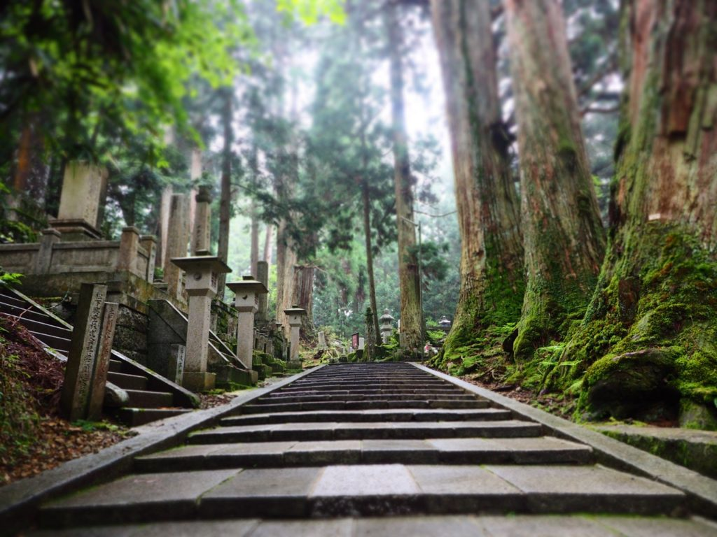The path through the Okunoin Cemetery at Koyasan (Mount Koya) in Japan is 2km long and flanked by ginormous cedar trees, some of which are more than 500 years old. Image: Alison Binney