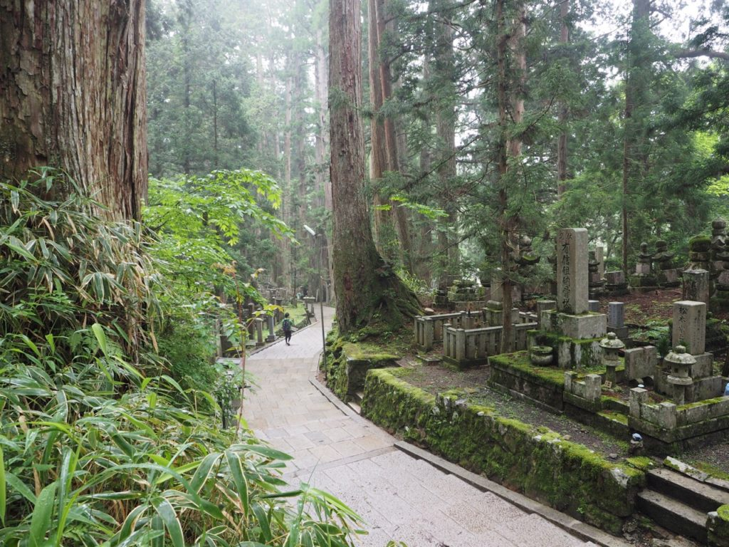 The ginormous cedar trees and memorials in Okunoin Cemetery at Koyasan (Mount Koya) in Japan are unforgettable. Image: Alison Binney