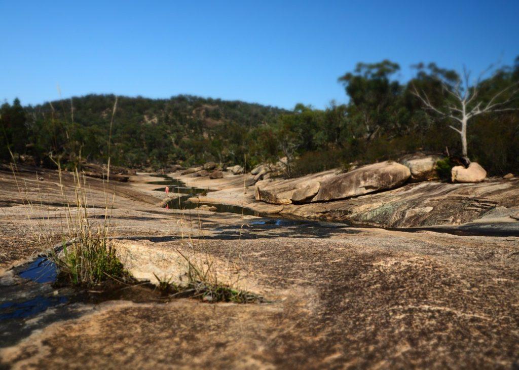 The Junction. Girraween National Park. Image: Alison Binney