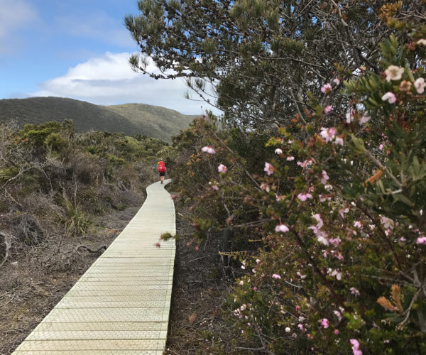 Three Capes walk, Tasmania