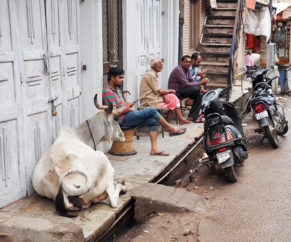 Coffee time in Pushkar, Rajasthan